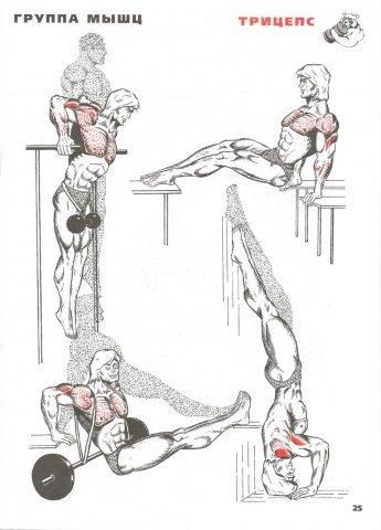 при занятии спортом болит локтевой сустав