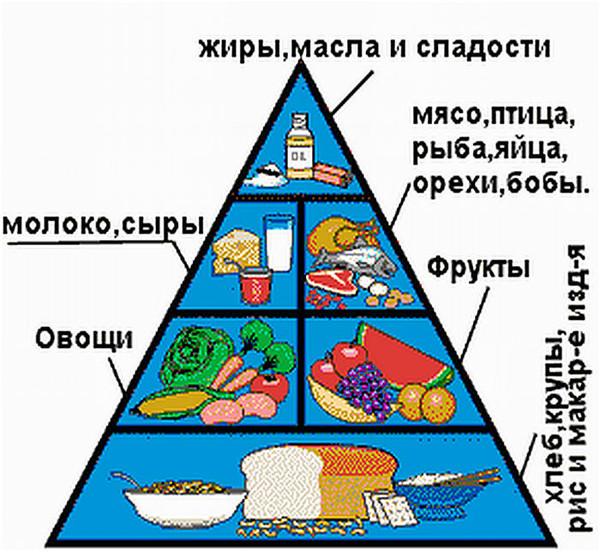 здоровое питание пирамида питания картинки только