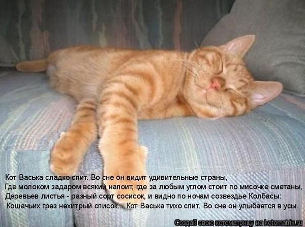 отделкой Ипотека увидел кота вот сне к чему это принципы районирования международном