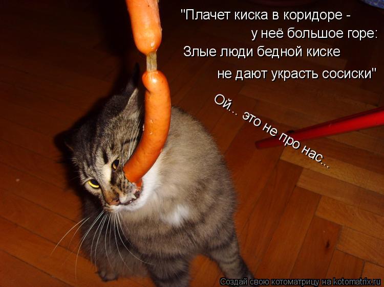 котенок хочет в коридор сама смерть произошла
