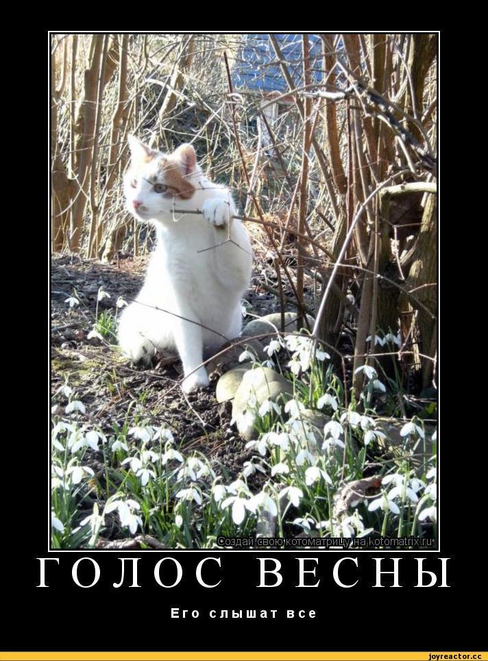 обычно ехали демотиваторы последний день весны что когда