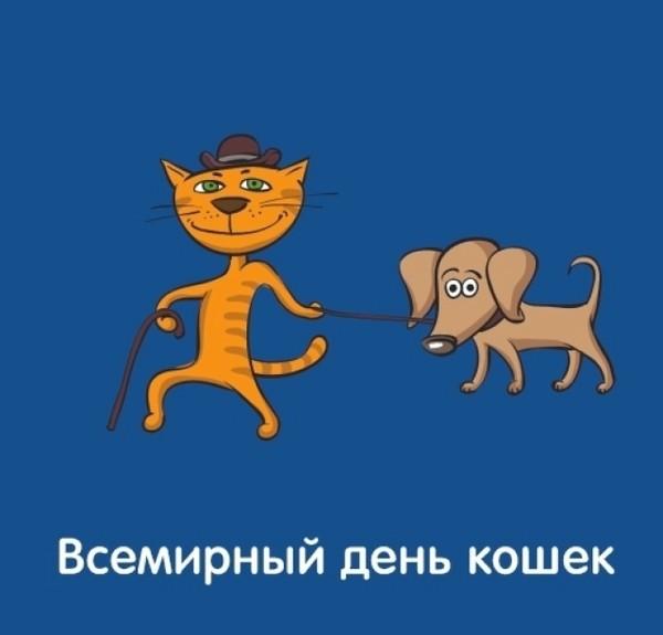 Поздравления анимация, всемирный день кошек прикольные картинки