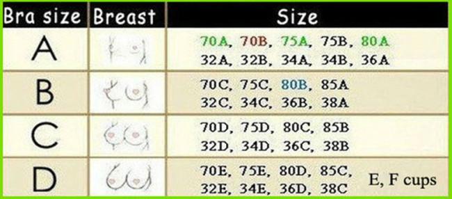 2c1925982 Ответы Mail.ru: 75 C, ето какой размер груди? Первый? Второй? Третий?