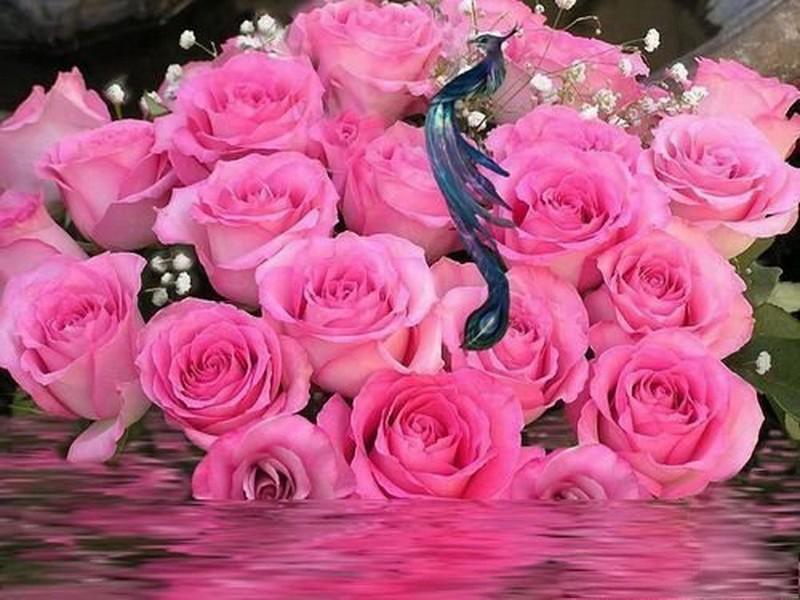 фото цветы для александры состоялась парижском отеле