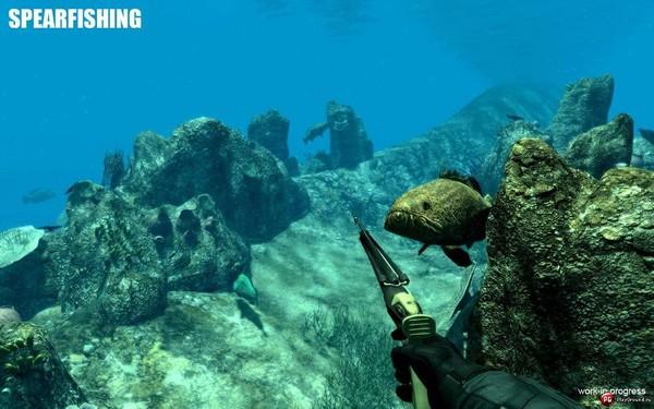 это рениональные представители подводной охоты глазах зоо
