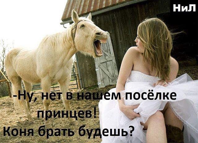 Смешная картинка принца на коне