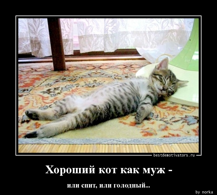 https://otvet.imgsmail.ru/download/61794439_3ea66f292636e5c0371175c9db6b699e_800.jpg