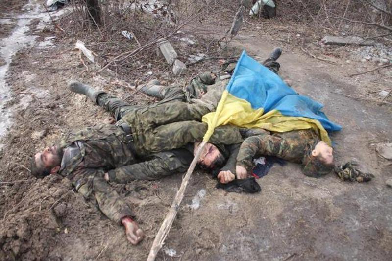 Картинки по запросу трупы украинских вояк