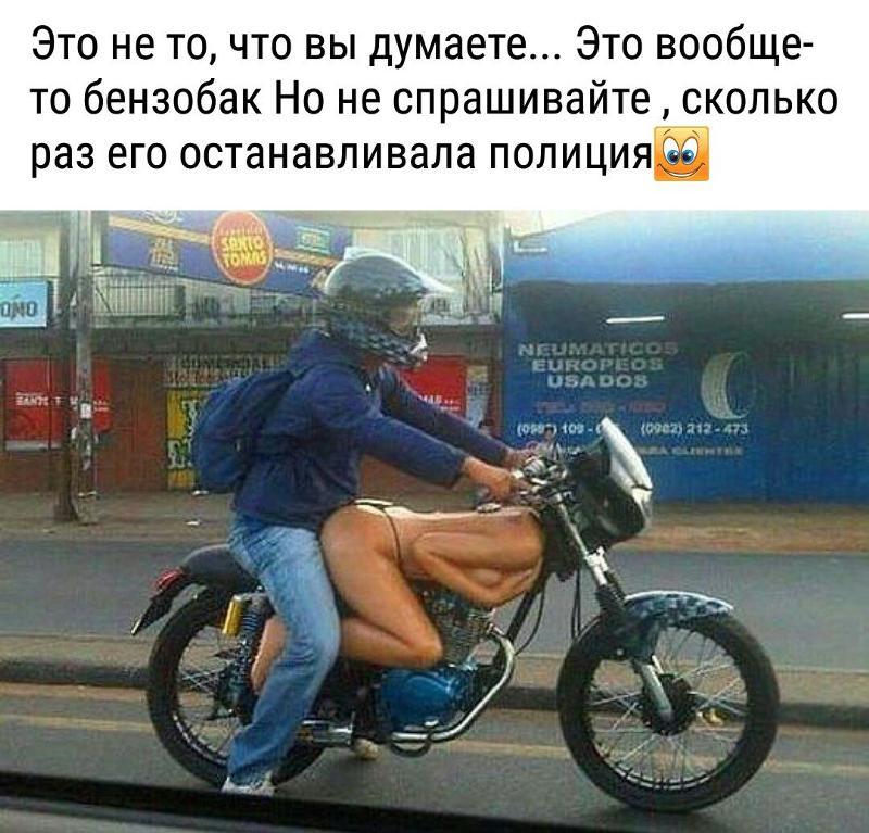 bot puusy pnro pic