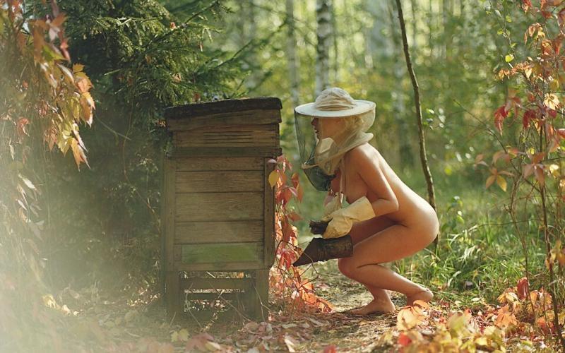Домашнее порно на природе и улице