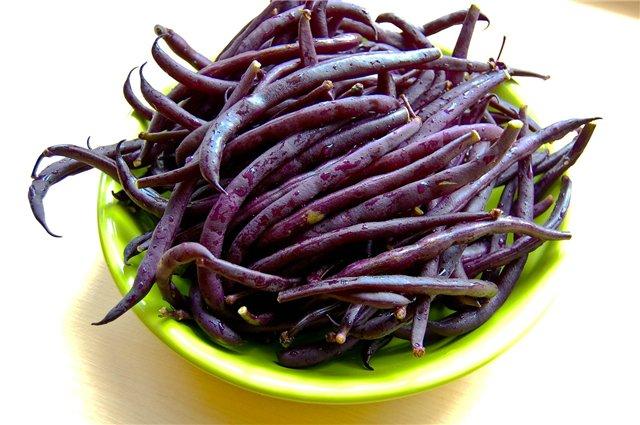 фиолетовая спаржевая фасоль рецепты