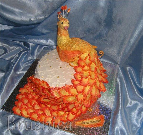 Торт птица фото