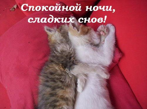 картинки самых сладких снов