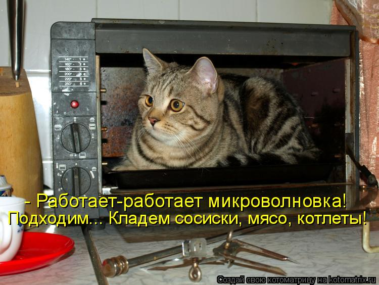 Смешные картинки про микроволновку
