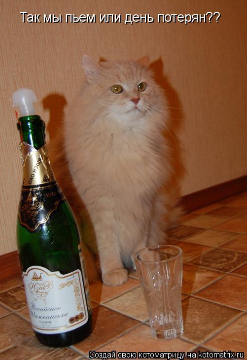 я сегодня напьюсь от того что люблю