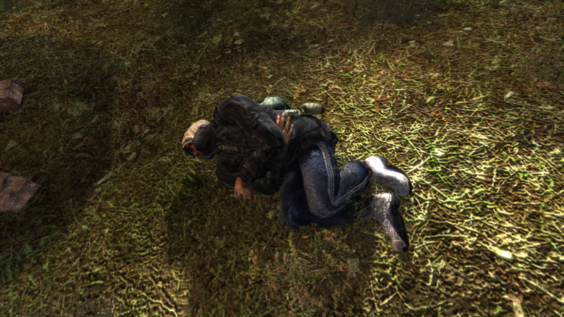 фото раненый сталкер
