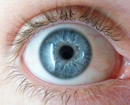 фото зелёно голубые глаза