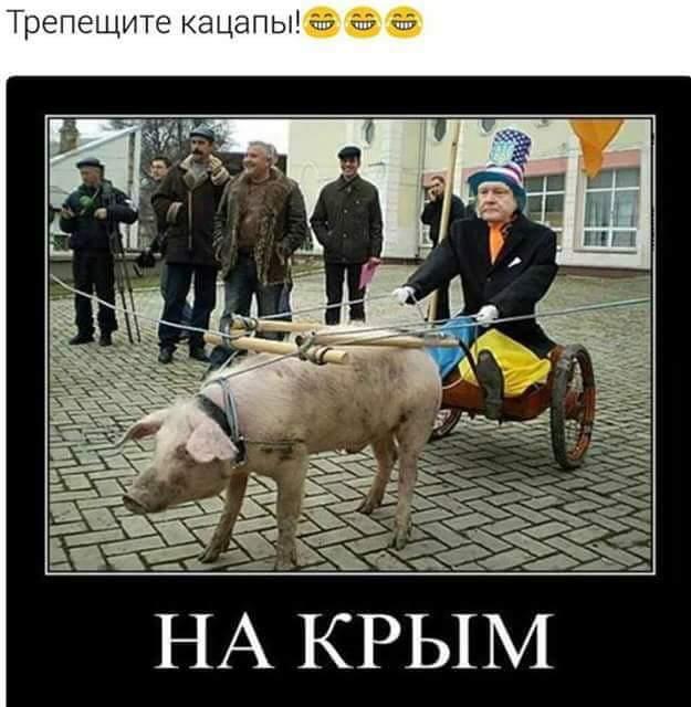 хохмы про украину фото после сессии