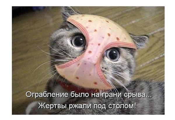 трусы на голове фото