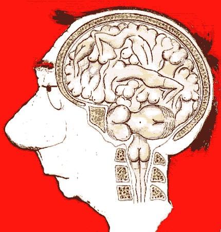 Картинки что у мужчины в голове