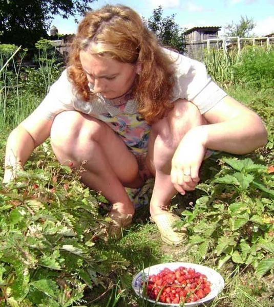 на огороде под юбкой фото - 7