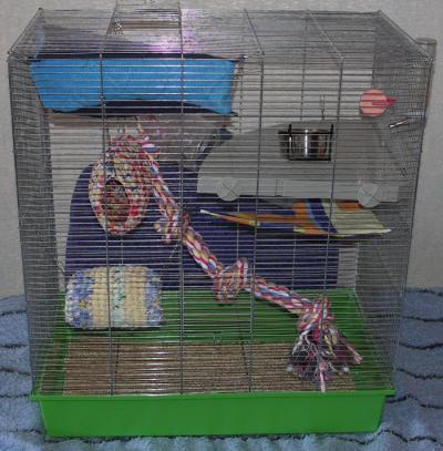 Клетки для крыс своими руками