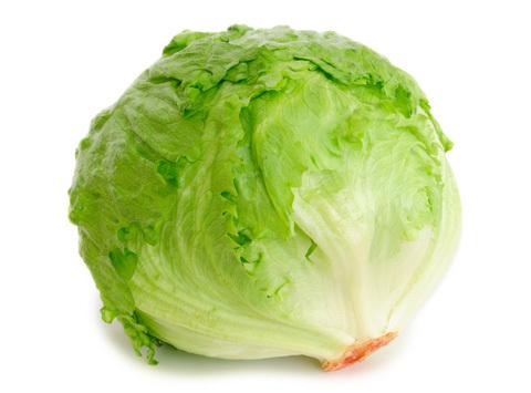 Айсберг салат это капуста
