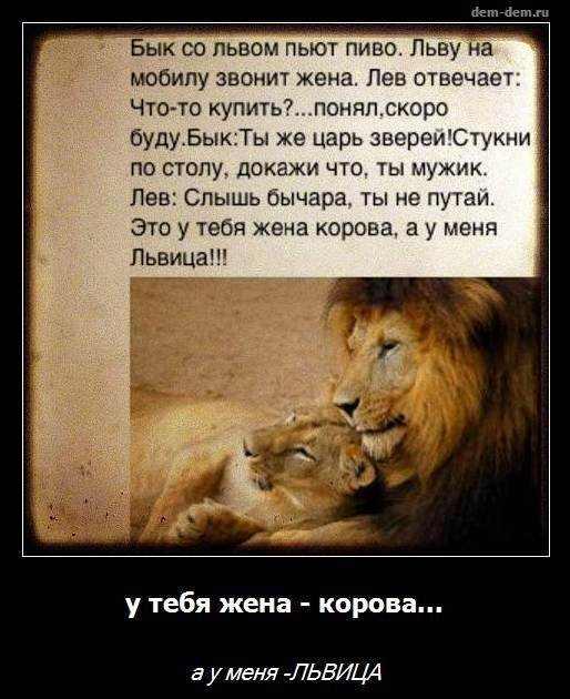 Картинки лев и женщина с надписями