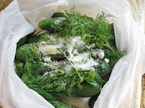 Огурцы в пакете рецепт фото