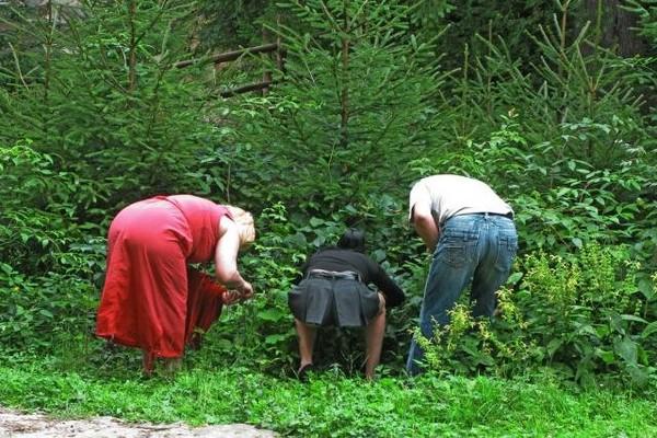 Жесткий секс с тетками в лесу