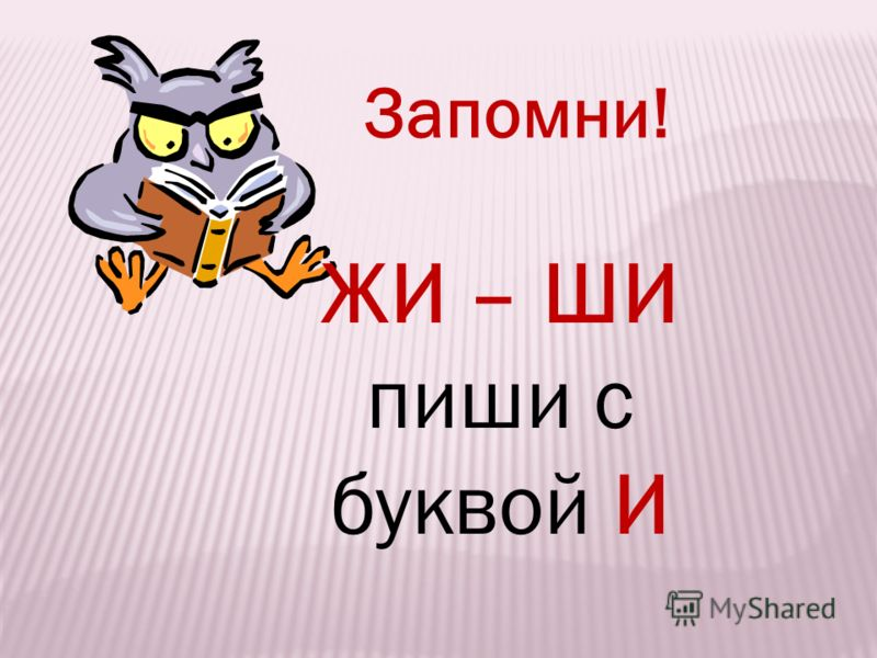 70862774_f540f3bb8d68ac297ee7e5c4ee8466f