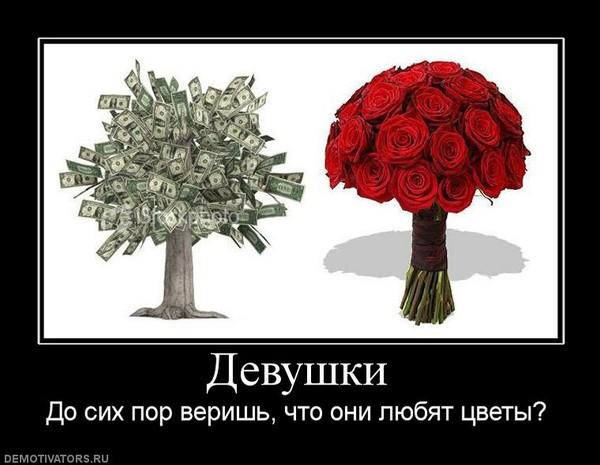 демотиваторы красивые цветы