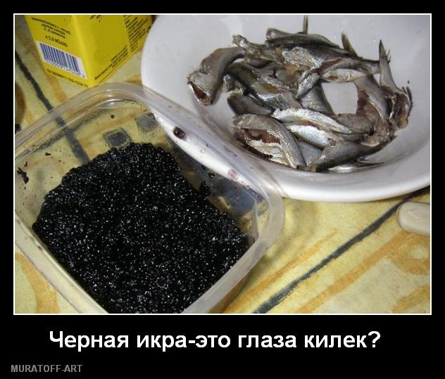 Производство черной икры в России выросло более чем на 20%