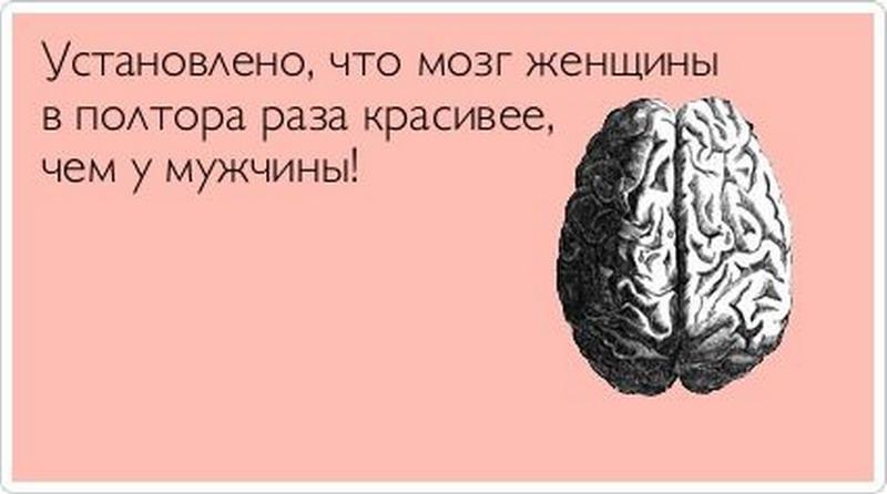 почему говорят куриные мозги постоянно чувствует усталость