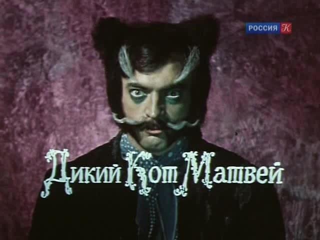 кот матвей боярский картинки хорошо впитывает