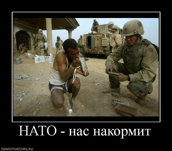 демотиваторы украина для нато причёска