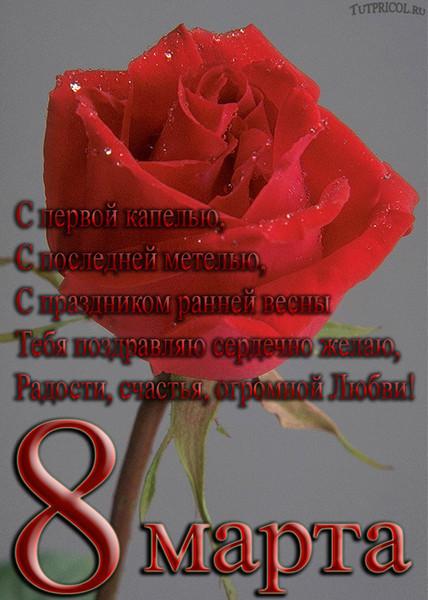 8 марта поздравления кумы с днем рождения