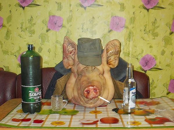 Смешная картинка свинья нажралась, любви семьи