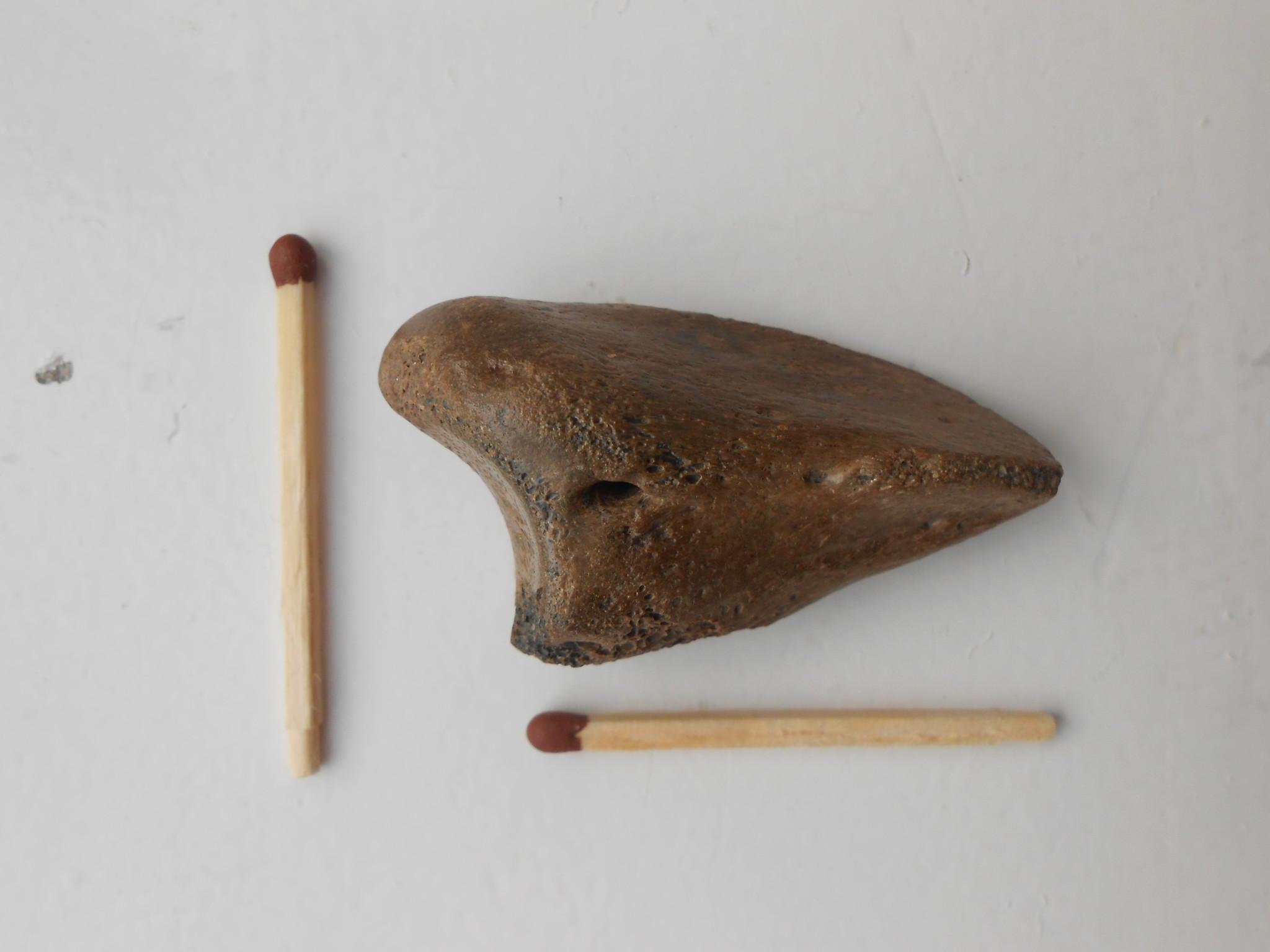 Находки палеофорум как называли купца который платил 50 гривен