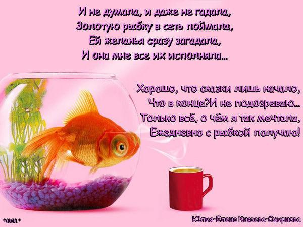 Смешные стихи про рыбалку