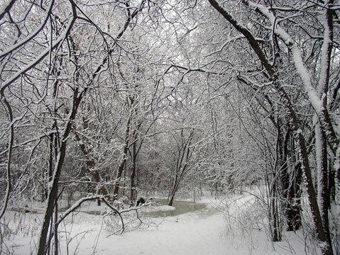 Картинки про зиму которые можно нарисовать