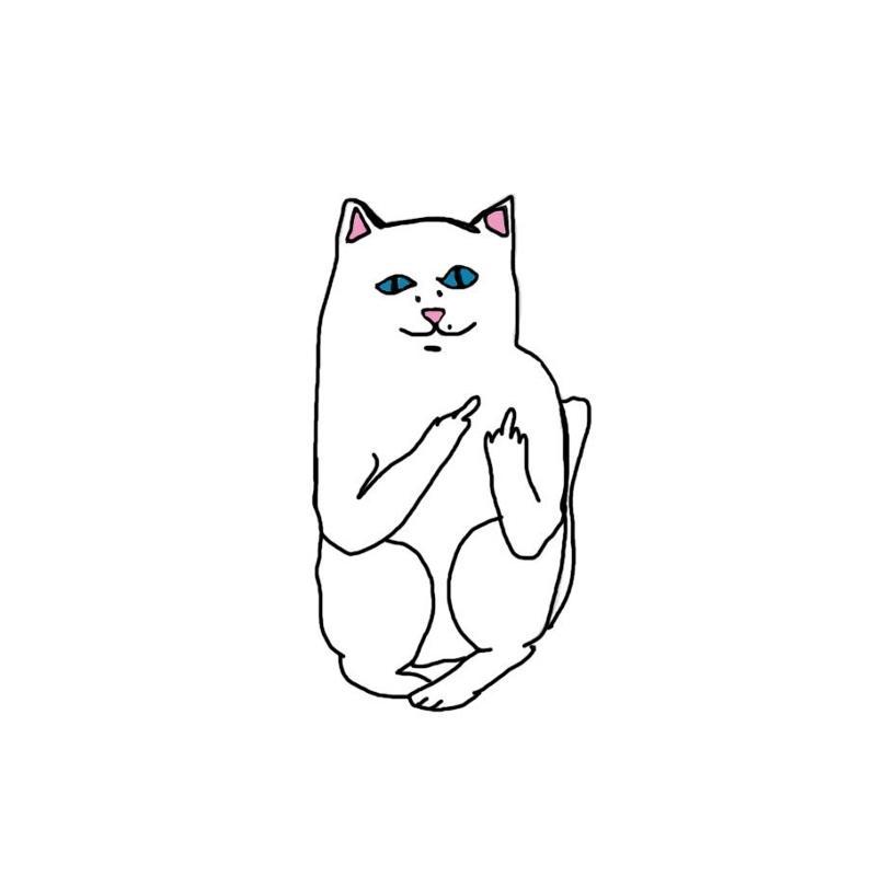 кот показывает фак картинки