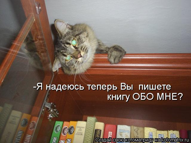 Картинка не верь коту его кормили для тех