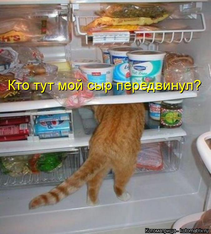 https://otvet.imgsmail.ru/download/78378870_76564238ae172f2deabc8825640f56b0_800.jpg