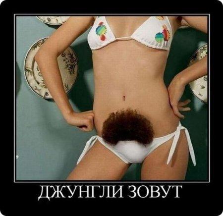 Фото эротика  самые красивые голые девушки