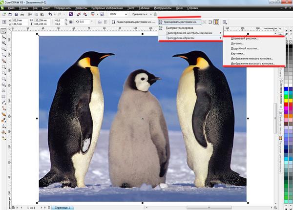 как растровое изображение преобразовать в векторное