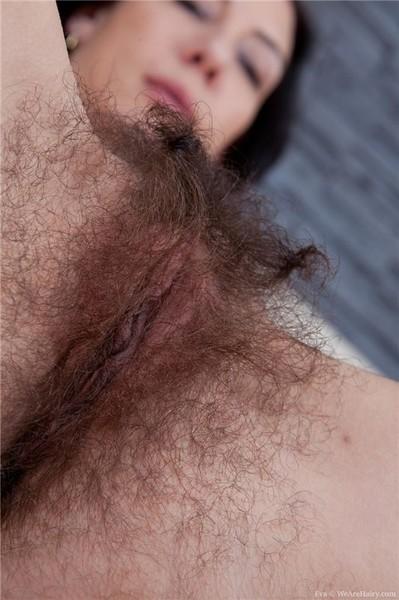 бесплатно волосатые фото