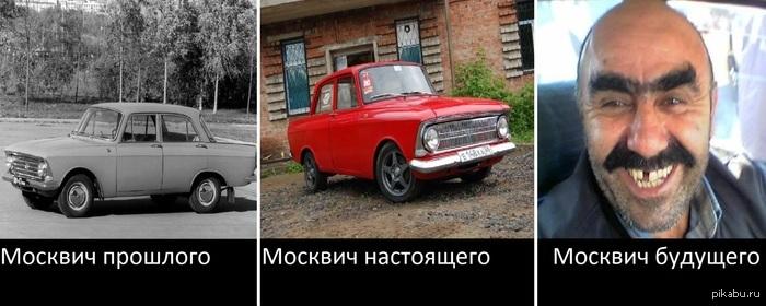картинки про москвичей приколы пассажиры, благодаря