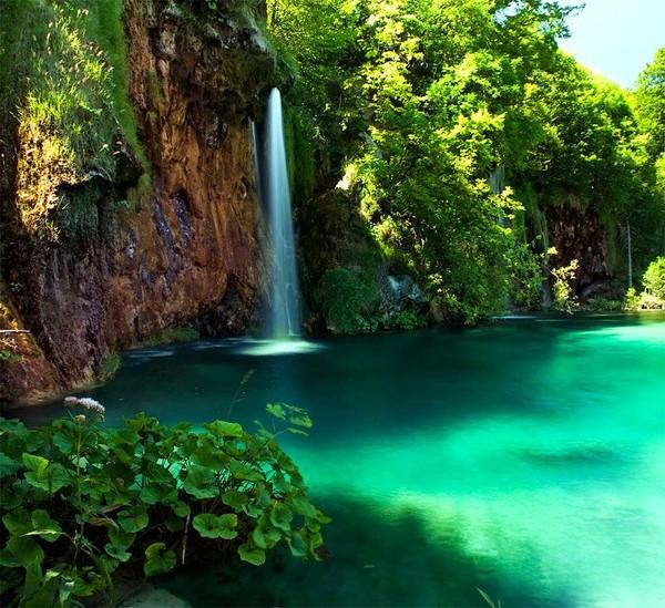 красивое фото возле водопада