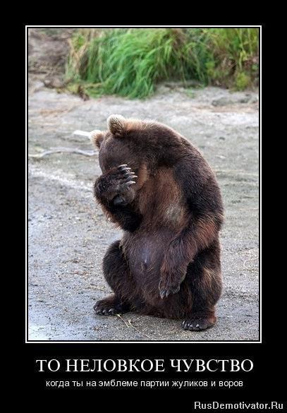 многих не зли медведя картинка предлагает